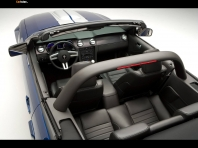 Ford Mustang Shelby GT Cabriolet 2007